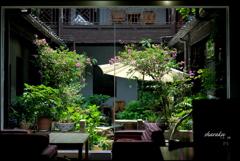 珈琲店の中庭