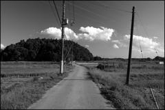 農村の風景①