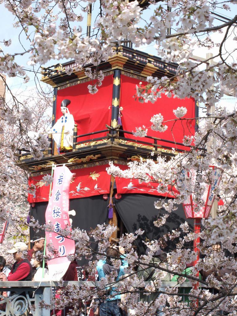 岩倉・桜まつり #2