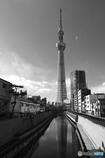 東京の冬空