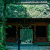 戸隠の新緑