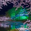 春夜の高田城