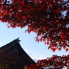 紅葉の曼陀羅寺