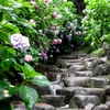 水の階段。