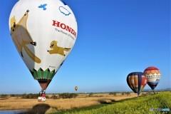 熱気球グランプリ スナップ