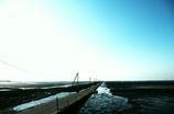 tideland road