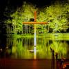 「水の教会」