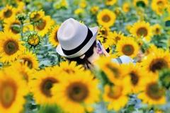 ヒマワリと夏帽子さん