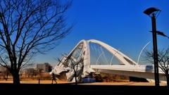 輝くアーチ橋とジョガー