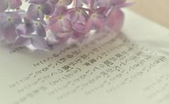 紫陽花の季節に生まれた君へ