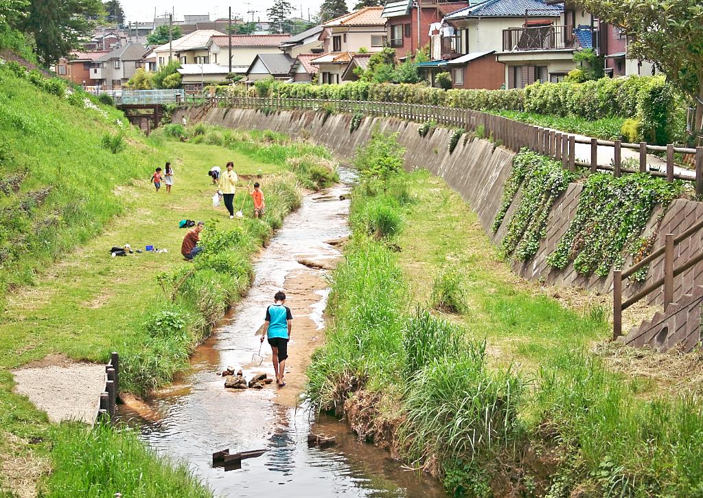 小川の散歩道 - 3