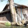 CANON Canon EOS Kiss X3で撮影した風景(イメージ1(魚眼、若草色の心で3))の写真(画像)