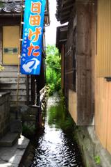 豆田の水路