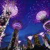 Night View Of Singapore②
