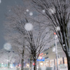 雪舞う街角