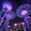 Night View Of Singapore⑤