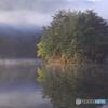 秋の池めぐり 14