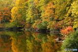 秋の池めぐり 6
