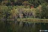 秋の池めぐり 4