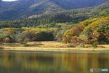 秋の池めぐり 7