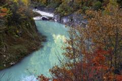 高瀬渓谷の秋