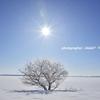 winter sky*