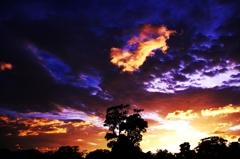 Perturb Sunset