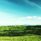 PENTAX PENTAX K-rで撮影した風景(mix green)の写真(画像)