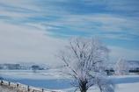 -26℃の青空