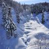雪の呼ぶ場所