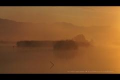 想い出の福島潟
