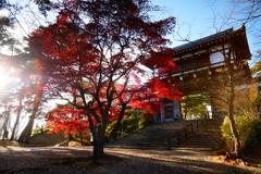 千秋公園1
