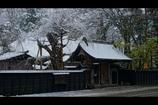 角館冬景色1
