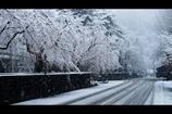 角館冬景色2