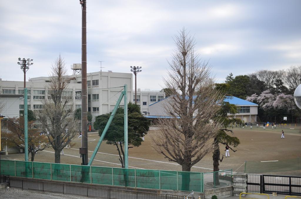 歩道橋の上から見た北大和小学校