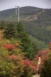 徳仙丈山 05