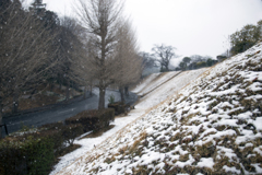 3度目の雪 01