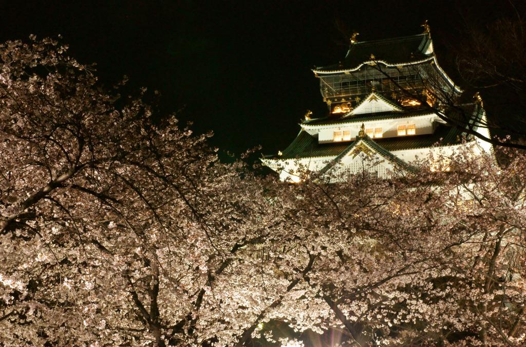 大阪城西の丸庭園2