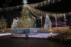 カラクリ・クリスマス アリオのイルミネーション点灯05