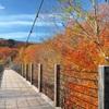 秋に架ける橋