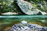 ▼ mountain stream