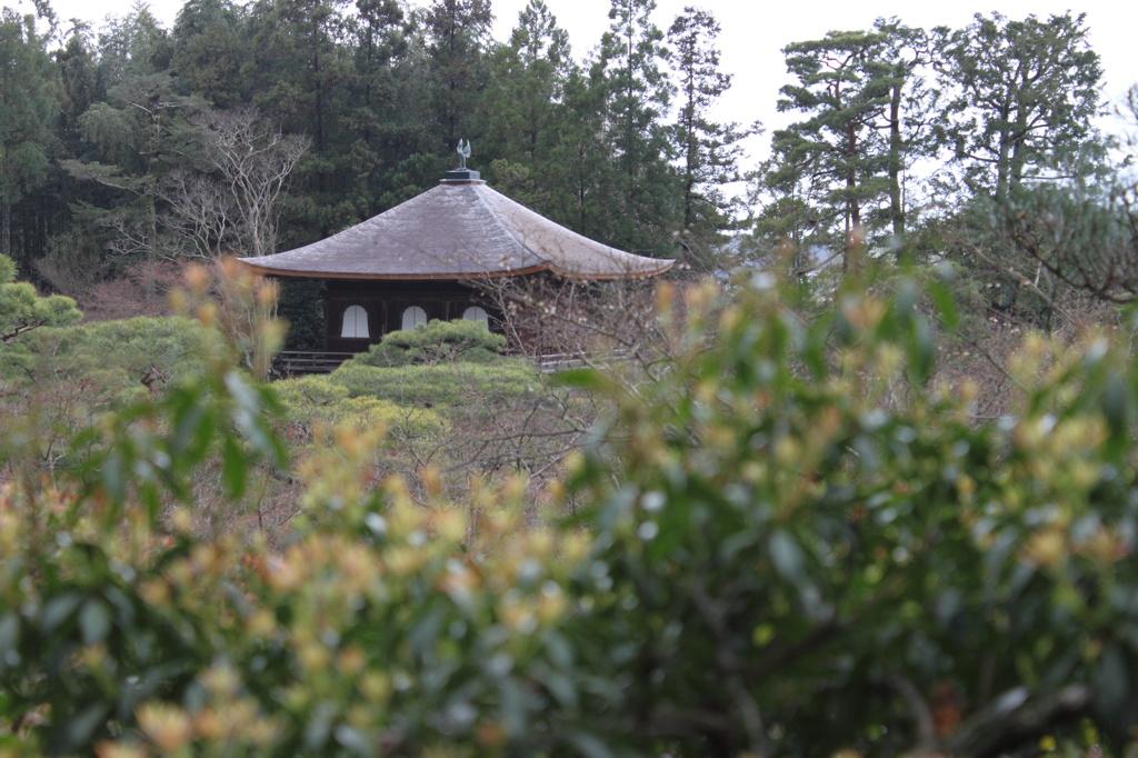 高台からの銀閣寺