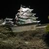 20100404姫路城桜④