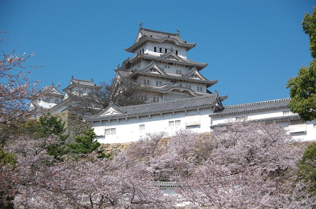 20100404姫路城桜①