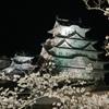 20100404姫路城桜⑤