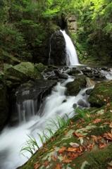 初秋の鳴滝