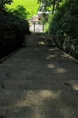参道から見える芸備線
