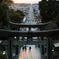 宮地嶽神社(光の道)
