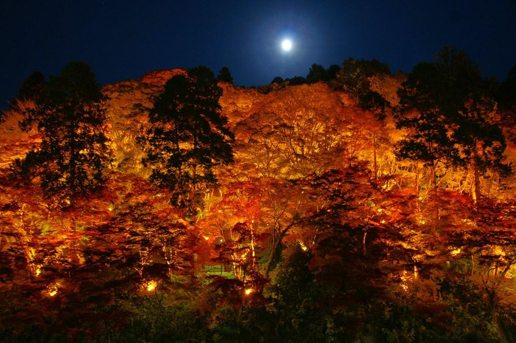 山燃ゆる秋の夜