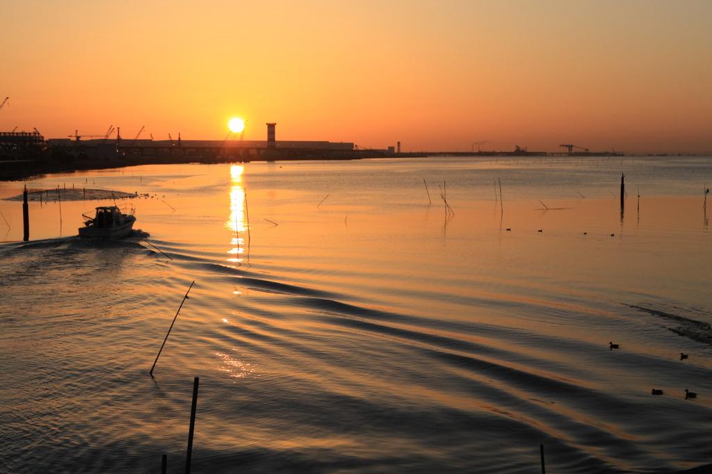 多摩川河口
